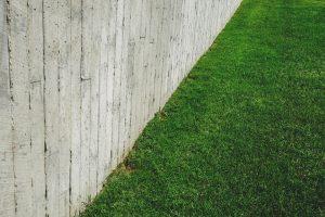 wood plank fence beside grass