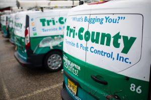 pest control service vans